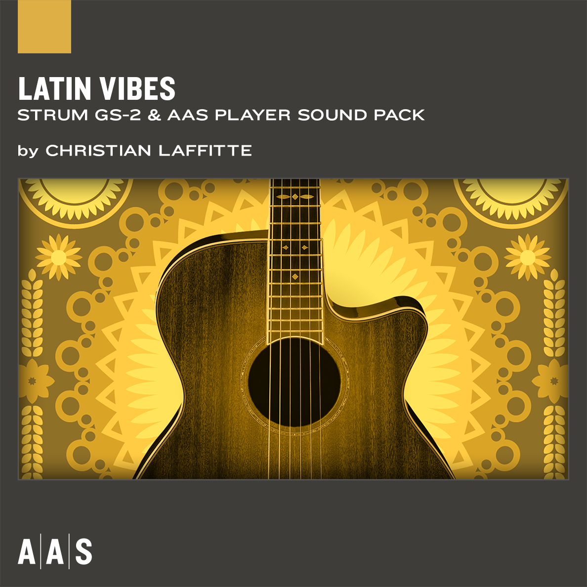 STRUM GS Sound Banks: Latin Vibes